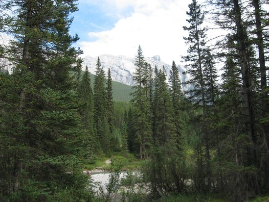Banff Trail Riders: Banff Trail Ride