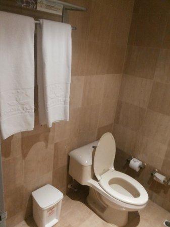 Bogota Plaza Summit Hotel: Banheiro