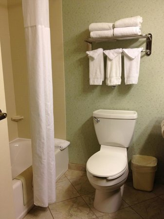 Country Inn & Suites By Carlson, Asheville West (Biltmore Estate): Clean bathroom