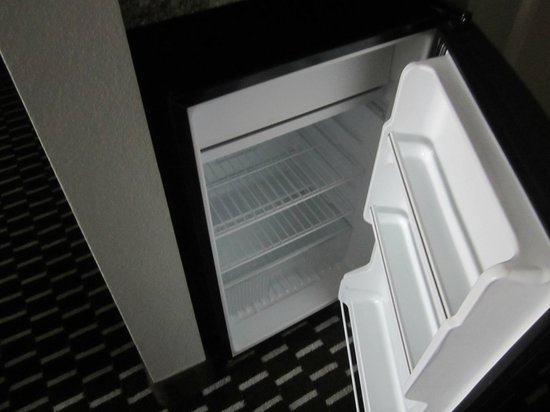 Comfort Suites Downtown: Fridge