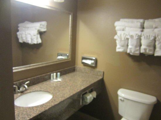 Comfort Suites Downtown: Bathroom