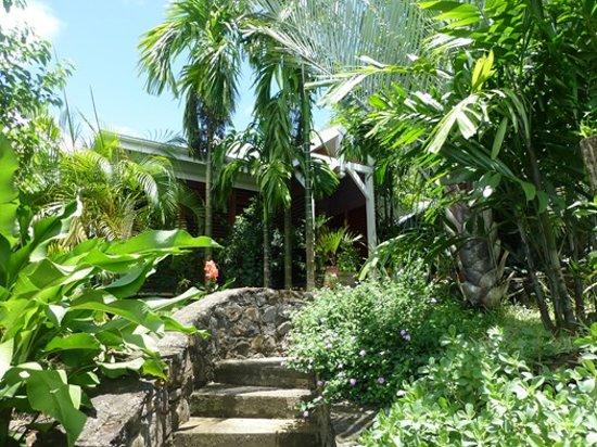 Rochers Caraibes-Eco Village: jardin