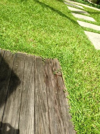 The Residence Resort and Spa Retreat: broken floor in the yard