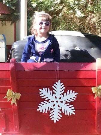 Putney, VT: santas sleigh