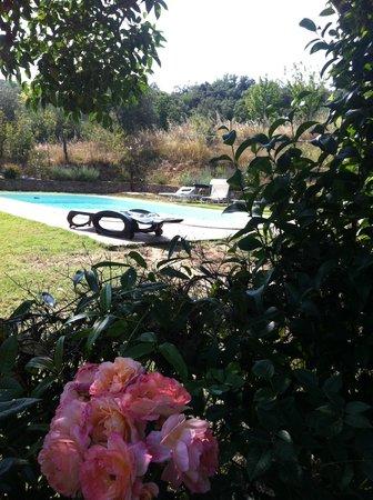 Migliano, Italy: Area relax