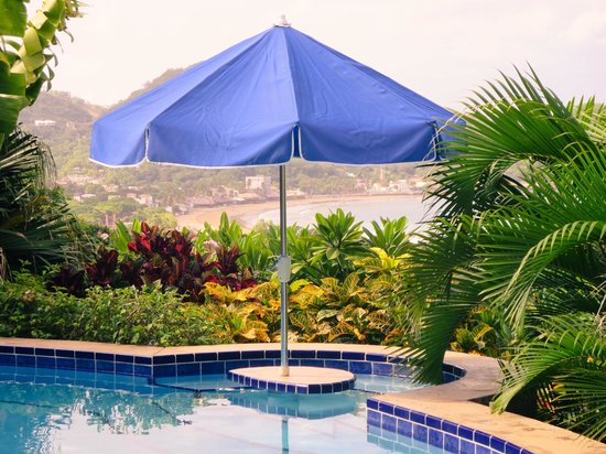 Las Palmas B&B: Pool view