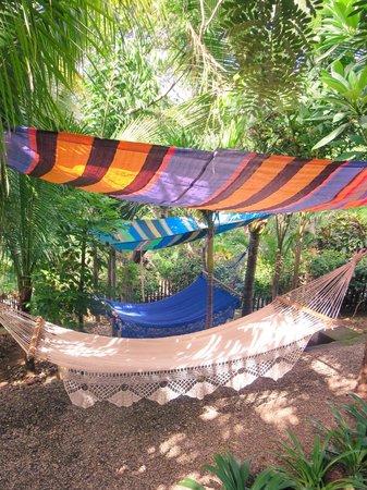 Las Palmas B&B : Hammock lounge area