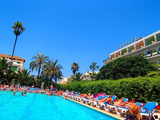 Hotel Tropical: The pool on a typical day