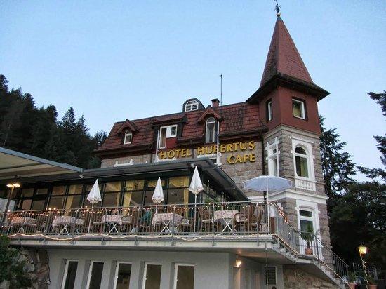 Seehotel Hubertus: Вид с озера на отель