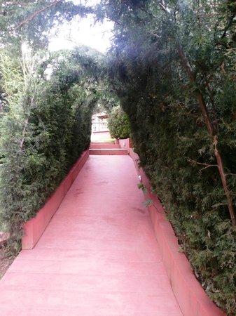 Kluney Manor: pathway