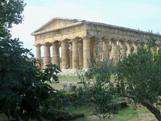 Paestum, อิตาลี: tempio di nettuno