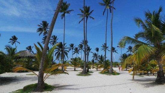 IFA Villas Bavaro Resort & Spa: Strand