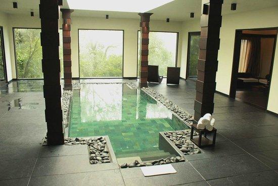 Pool villa picture of taj madikeri resort spa coorg - Resorts in madikeri with swimming pool ...