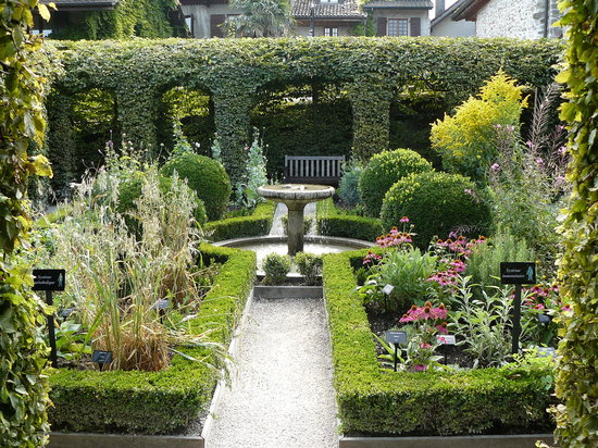 Attirantes ces belles plantes non picture of jardin for Jardin 44 des 5 sens