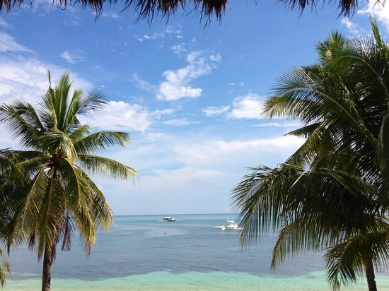 Ocean Vida: View from table
