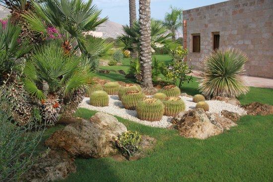 Geco Resort: giardino
