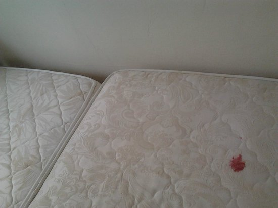 Hotel Bearnais: Tâches sur les matelas.