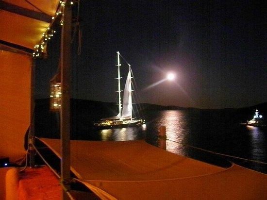 Luv All Sea Bar : Night view