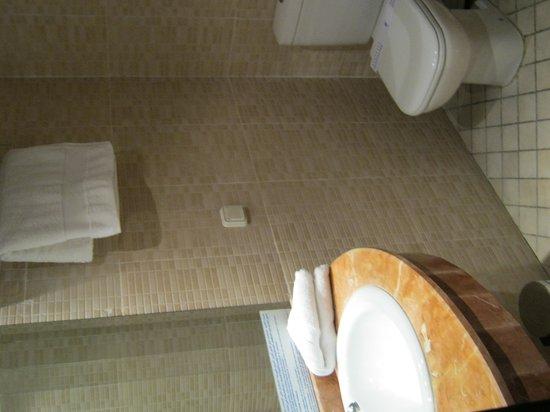 Hotel Almas: Toilet