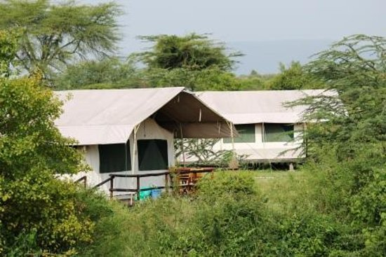 Mara Eden Safari Camp: A view from the Park side of the river.