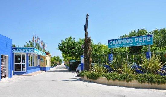 Camping Pepe : Recepción y entrada a camping