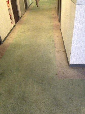 Miyazaki Dai-ichi Hotel : Corridor leading to the room