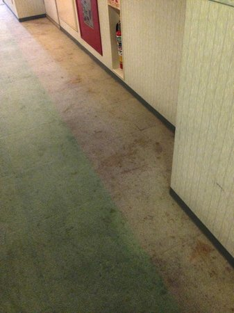 Miyazaki Dai-ichi Hotel: Corridor to room