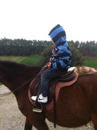 Cal Carulla: Paseos en caballo