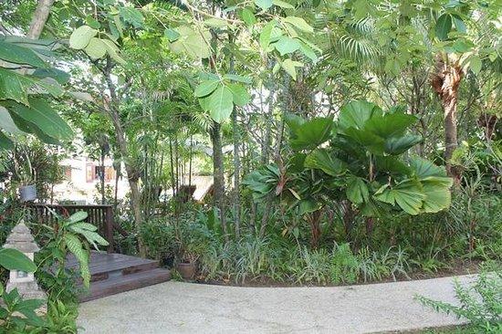 Le Murraya : Otel bahçesinden bir görüntü