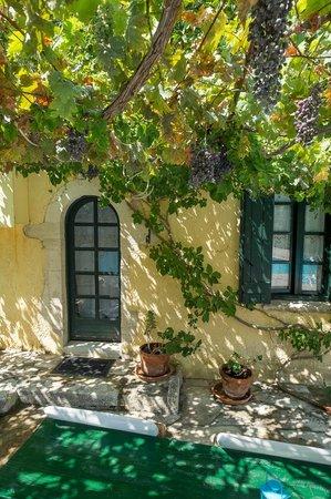 Vamos Traditional Village: Vamos village  Milopetra II