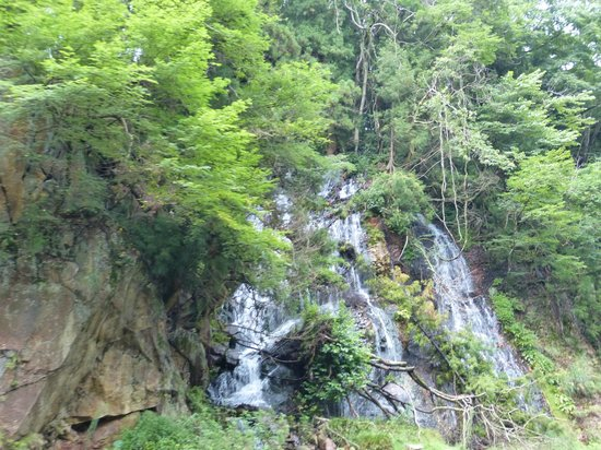 Kinugawa River Boat : waterfalls