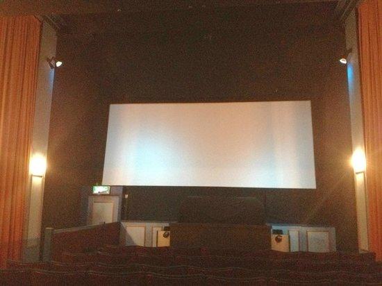 Palace Cinema: The screen