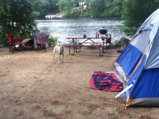 Barrington Shores Campground: Our site at Barrington Shores