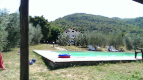Agriturismo Le Pozze : Relaxing by the pool