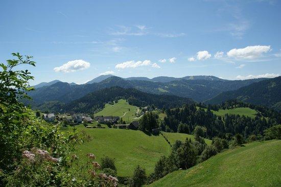 Tourist Farm Zelinc : Omgeving