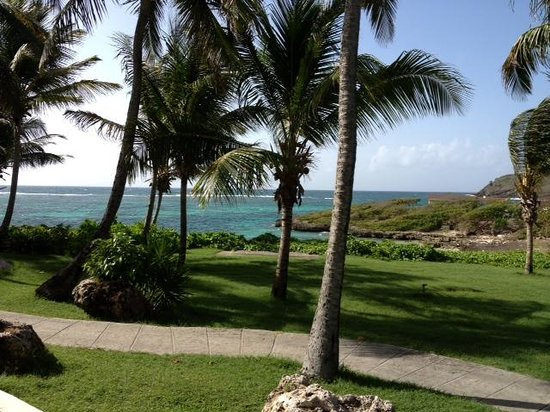 St. James's Club & Villas: View from the gym - beat that!