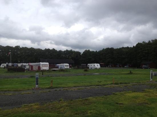 Nidelv brygge og camping: camping terrein