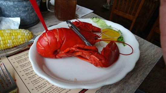 Fox's Lobster House: The lobster at Fox's.