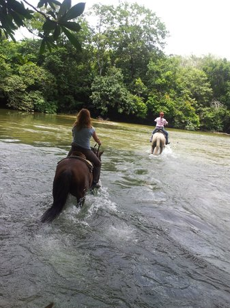 Hanna Stables: Crossing the Mopan River