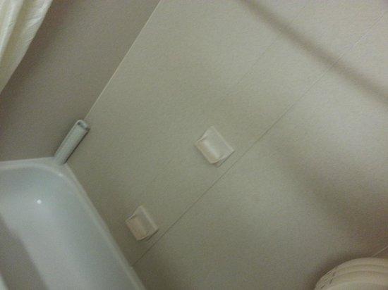 Quality Inn & Suites : Bathtub in room