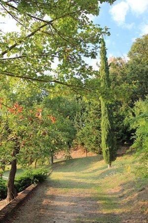 La Manonera Parco