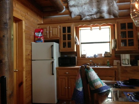 Cherokee Mountain Log Cabin Resort: Full kitchen made our stay wonderful!