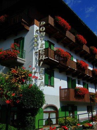 Hotel Pontechiesa: 花々で彩られています