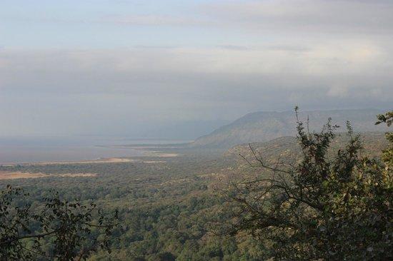 Lake Manyara Wildlife Lodge: view of lake manyara from Lodge