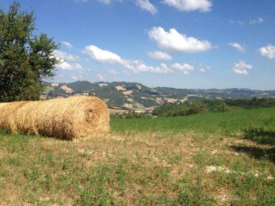 Agriturismo Ca' Maddalena: panorama in passeggiata