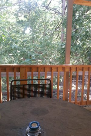 Cypress Creek Cottages : Back Patio