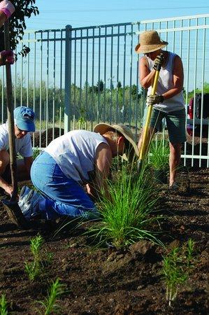 Roseville Utility Exploration Center: Gardening workshops