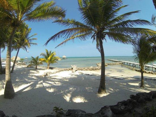 Xanadu Island Resort: View from our condo