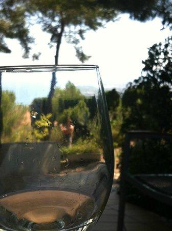 Restaurante El Pinar: Garden view