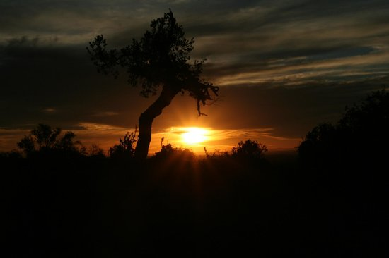 Kuzuko Lodge: Afrikanischer Sonnenuntergang